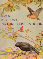 Enid Blyton: Enid Blyton's Nature Lover's Book (Centenary Fiction)