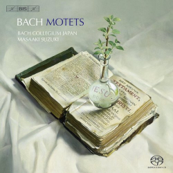 Bach JS - Motets: Bach Collegium Japan - Direction Masaaki Suzuki