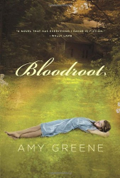 Amy Greene: Bloodroot (Kindle)