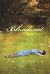 Amy Greene: Bloodroot (Kindle)