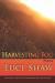 Luci Shaw: Harvesting Fog