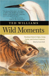 Ted Williams: Wild Moments