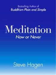 Steve, Hagen: Meditation Now or Never