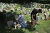Pet burial