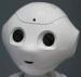 1aa1arobot