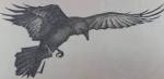 Upsetbird