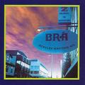 Bentley Rhythm Ace - Who Put the Bom in the Bom Bom Diddley Bom