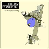 The Joy Formidable - Cradle