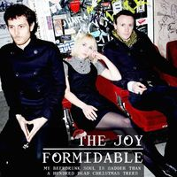The Joy Formidable - My Beerdrunk Soul is Sadder than a Hundred Dead Christmas Trees