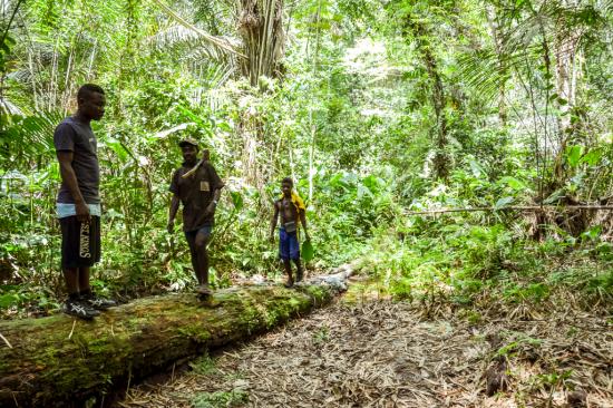 13.- Pigmeos bakas en la selva de la reseva del Dja : Chema Caballero