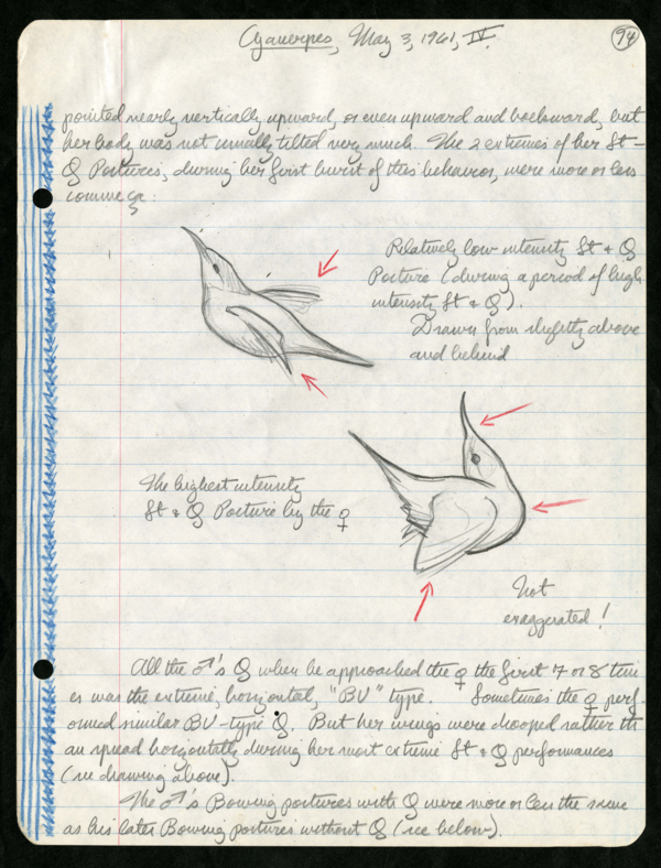 National Handwriting Day: The Results Are In! - Field Book Project