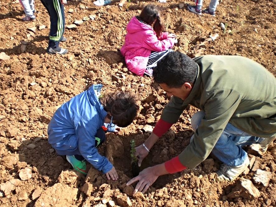 Proyecto internivelar: Protectores plantarios. 'Día del árbol', en el Colegio Público 'Ramón y Cajal' de Alpartir |  Fondo documental del Centro.
