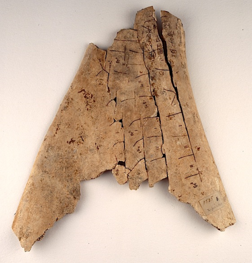 BL Or.7694.1535 (recto). Shang Dynasty oracle bone. The typical ├ shaped cracks are evident on the surface.
