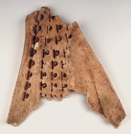 BL Or.7694.1535 (verso). Shang dynasty oracle bone. Pit marks are visible.