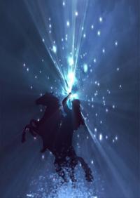 Horsewoman-407660_640