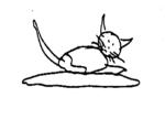 Searle's Cat