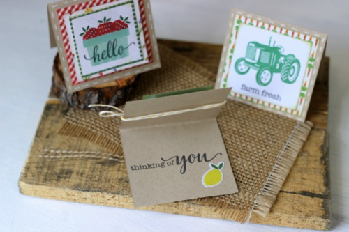 """Homegrown"" Mini Cards by Holly Gagnon with Designer Stamps and Products by #echoparkpaper"