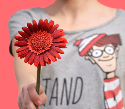 Girl wearing a Where's Waldo t-shirt and holding a red flower