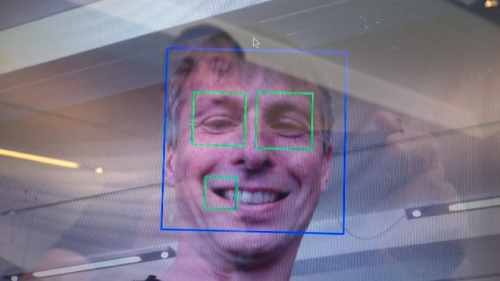 Green rectangles are what OpenCV think are eyes. I have too many.