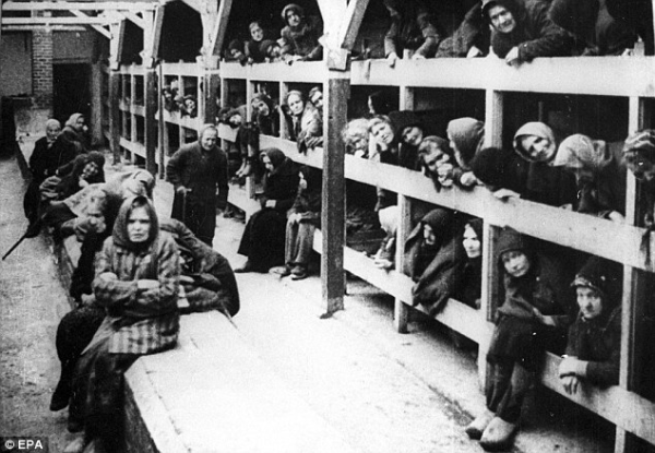 nazi labour camps and capitalism essay Consumption pattern of nazi germany changed, although with a decrease in real income by 25% the employment rate zoomed to 100% the downward stickiness of labor price were countered by rules and regulation of employment policies banning 'strikes and labor rights to negotiate.