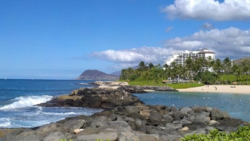 You can great cocktails to go with the beautiful scenery in Ko Olina
