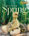 Jill Esbaum: Everything Spring