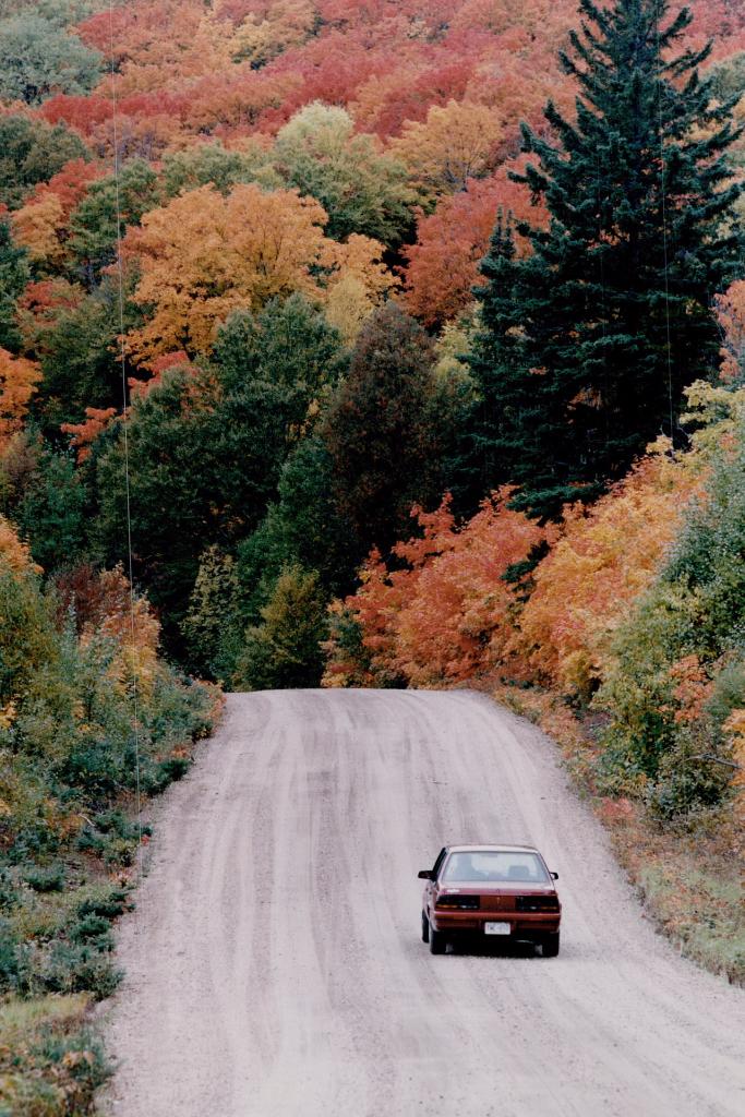 Red car heading into Algonquin Park's autumn domain